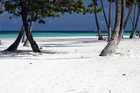 caribbeans: perfect beach landscape on white sand beach Stock Photo