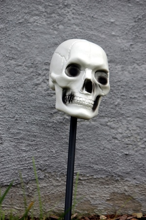 scary skull on a stick