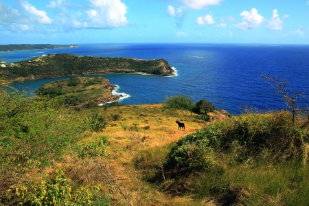 in the heights: Shirley s Heights, Antigua