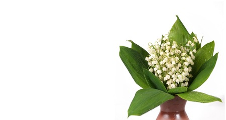 Bouquet of lily of the valley isolated on white background for concept of posters, banners, postcards