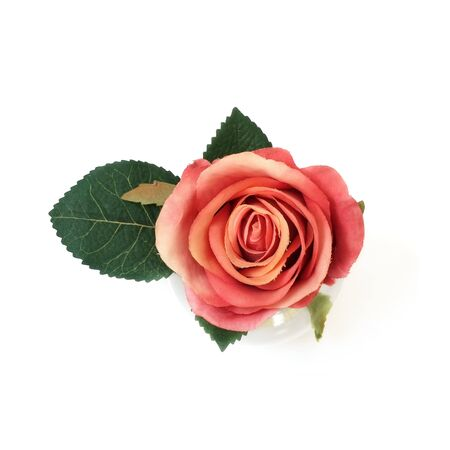 Bouquet of pink rose isolated on white background