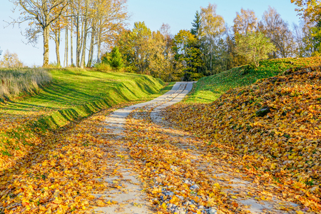 winding walking path to the nature park in the fall Stock fotó - 114279918