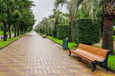 seaside park track in the rain after the end of the tourist season, Batumi, Georgia Stockfoto