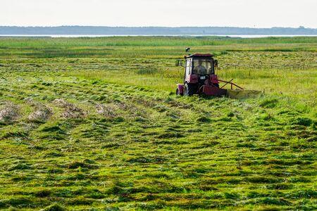 mały traktor z kosiarką kosi trawę na łąkach nad brzegiem jeziora