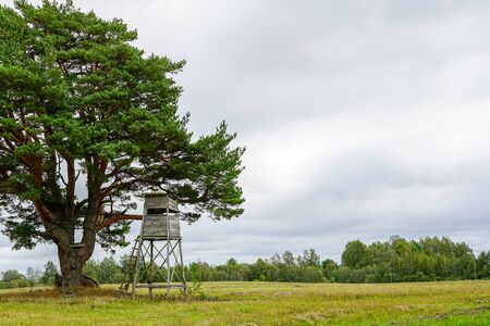 a observation tower at the edge of the forest for hunting wild animals