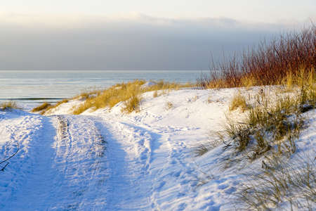 beautiful winter seascape with dunes on the Baltic sea coast