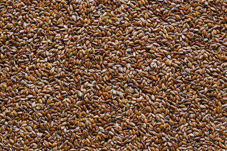 Linseed also Flaxseed grains as a brown background
