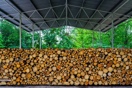 a pile of uncut firewood prepared for the winter under a large metal canopy
