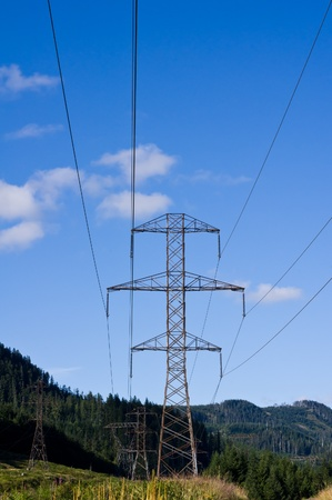 Electrical transmission lines and tower running through the forest Stock Photo - 9738737