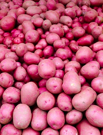 Freshly dug red potatoes on display at the farmers market