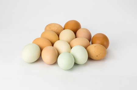 Heirloom eggs assorted colors