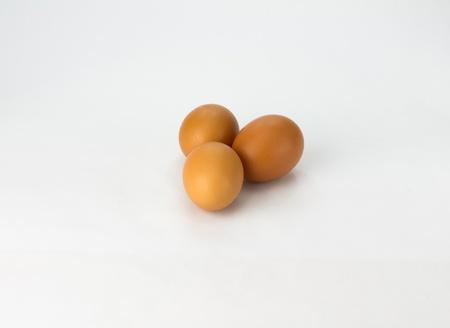 화이트 세 신선한 무료 범위 갈색 계란
