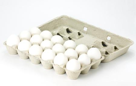 신선한 흰 계란의 판지