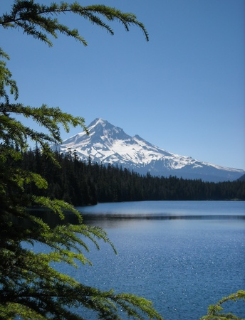 lost lake: View of Mt Hood over Lost Lake framed by tree branches
