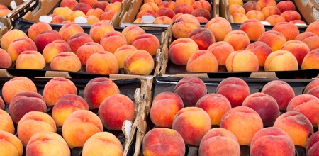 Freshly harvested peaches on display at the farmer