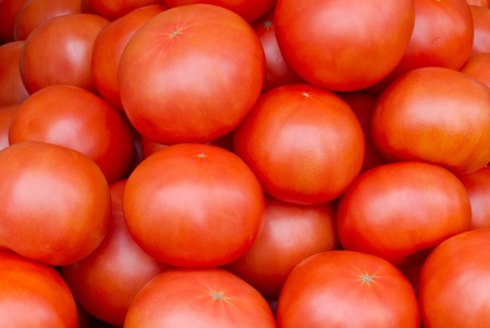 Fresh picked red ripe tomatoes on display at the farmers market