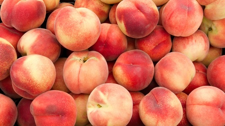 Freshly picked white peaches on display at the farmers market
