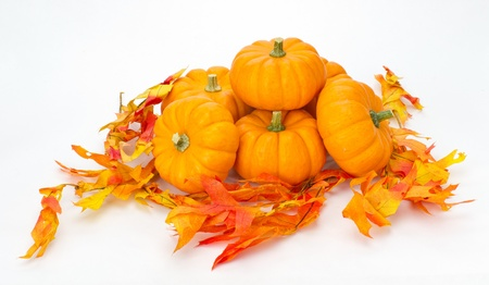 Colorful fall leaves and pumpkins for decoration on white photo