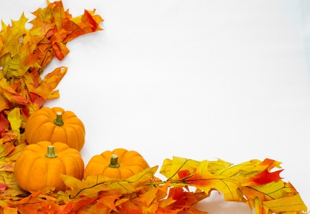 harvest festival: Colorful fall leaves and pumpkins for decoration on white
