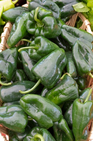 Freshly picked poblano peppers on display at the farmers market