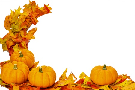 Corner border with fall leaves and four small pumpkins isolated on white photo