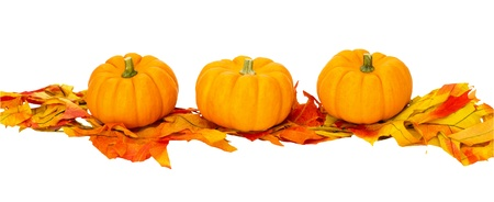 Three small pumpkins on fall leaves isolated on white photo