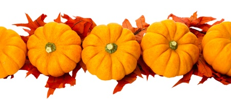 Border element or centerpiece made of fall leaves and small pumpkins isolated on white