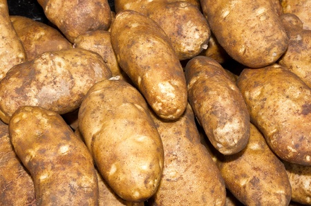russet: Fresh russet or baking potatoes on display at the farmers market Stock Photo