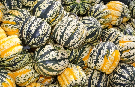 Colorful winter or acorn squash on display at the farmers market