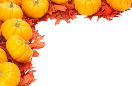 secular: Corner border with small pumpkins on oak leaves