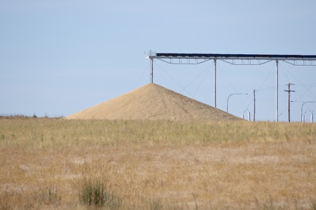 grainery: Grain being dumped on ground as excess to storage capacity