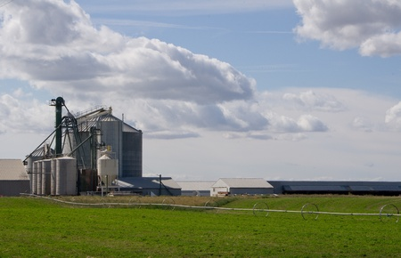 Grain storage silos and mill with bright cloudy sky and green field