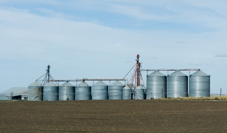 Steel grain storage silos and freshly harvested field photo