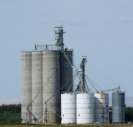Concrete grain storage silos with elevators photo