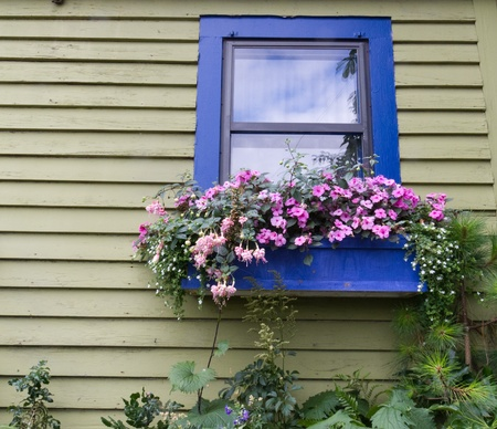 A window box full of flowers above a garden
