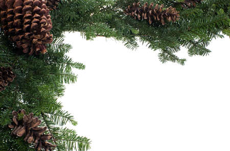 A corner border for Christmas with boughs and cones photo
