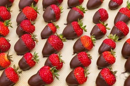 Un plateau de fraises enrob�es de chocolat pr�tes � servir Banque d'images