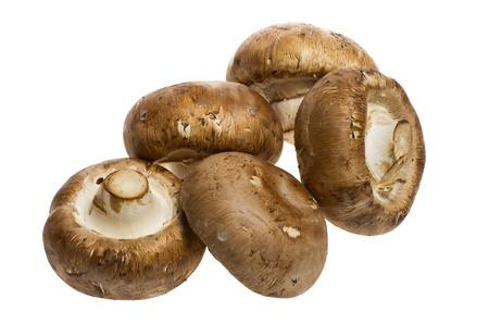 Five portobello mushrooms isolated on white Banco de Imagens