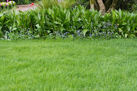 A green lawn with a flower bed in the background Banco de Imagens