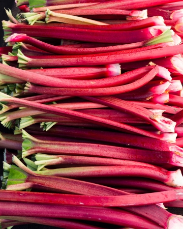 A display of red rhubarb stems harvested and ready to eat Banco de Imagens