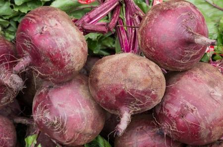 remolacha: Remolachas cosechadas frescas y listas para la venta Foto de archivo