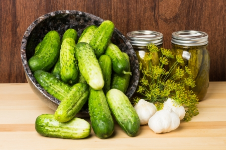 Pickles or cucumbers with jars of pickles garlic and dill
