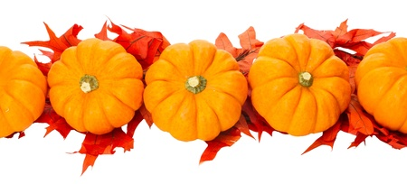 Fall border element with small pumpkins and red leaves photo