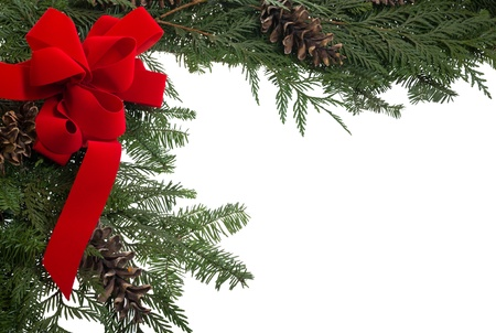 Christmas border of live pine boughs and a red bow Banco de Imagens - 14608044