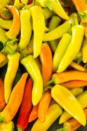 chiles picantes: Fresh pimientos en exhibici�n en el mercado de los agricultores