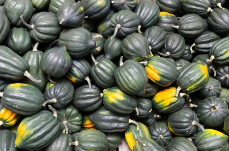 Freshly harvested acorn or winter squash on display at the farmers market