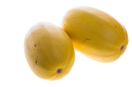 Two ripe harvested spaghetti squash isolated on white