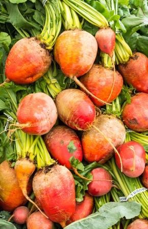 Oranje bieten wortels te zien op de boerenmarkt Stockfoto