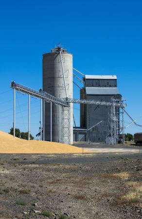 grainery: Silo and grain elevator with grain on ground Editorial