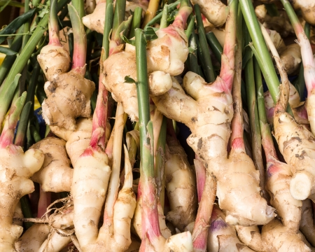 ginger plant: Display of fresh ginger root at the market